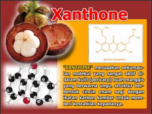 obat herbal kanker darah terbukti