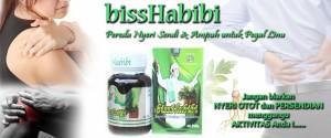 obat herbal nyeri sendi bisshabibi